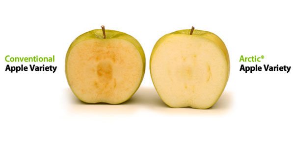Manzana-que-no-se-oxida-Artic-Apple-2